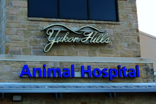 Closeup picture of exterior logo sign for animal hospital.